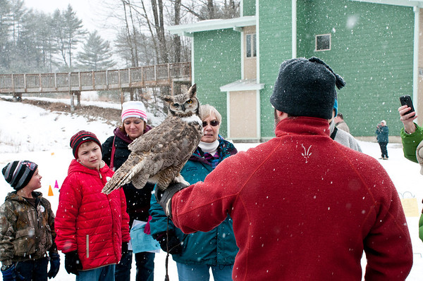 Owl Festival 2013