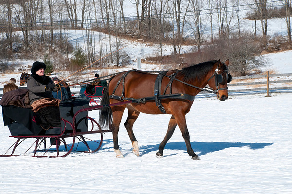 Green Mountain Horse Association Inc.